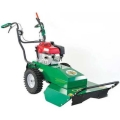 Where to rent BRUSH CUTTER, 26  BILLY GOAT HYDRO STATI in Wautoma WI